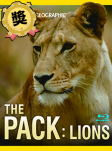 The Pack-Lion